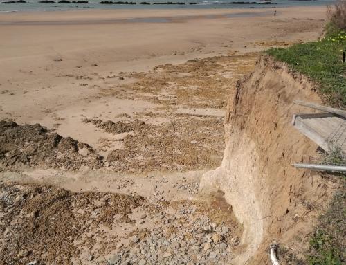 El Gobierno invertirá 2,5 millones en regenerar la playa de Costa Ballena